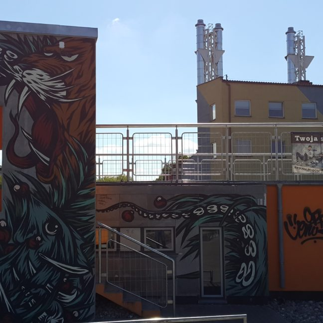 Skatepark Piaseczno Graffiti Swanski